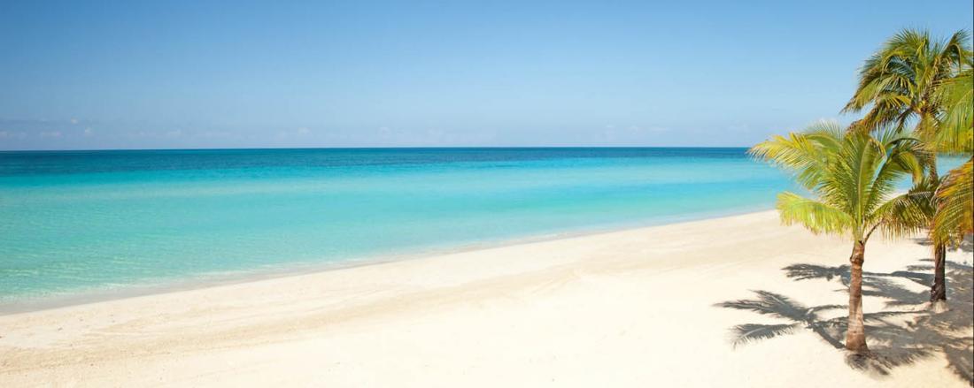 - MSC DIVINA - under a caribbean sky