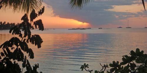 Isole Fiji e Cook